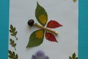 Аппликация из листьев и природных материалов «Бабочка»